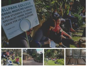 Naturopathy-students-wellpark-college